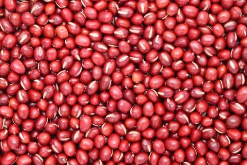 小豆 あずき 豆 まめ マメ アズキ 食べ物 穀物 農産物 農作物 フード 食材 飲食 夏 乾燥 背景 素材 イメージ 質感 テクスチャ テクスチャー アップ クローズアップ バックグラウンド 赤 赤色 アズキ色 あずき色 日本 背景素材 自然 スタジオ スタジオ撮影 たくさん 沢山 一面 全面 無人 食物 種 実 植物