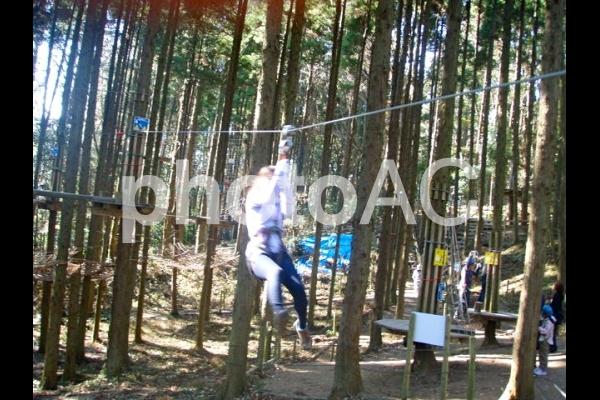 森の中のアスレチックで遊ぶ女性の写真