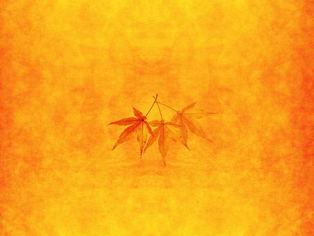 モミジ もみじ 紅葉 椛 かえで カエデ 楓 葉 植物 自然 秋 余白 背景 背景素材 バックグラウンド テキストスペース コピースペース 暖色 空間 質感 テクスチャ 赤色 赤 季節 3枚 三枚 重なる 合わさる 透ける 透かし 半透明 オレンジ 金 黄金 黄色 加工 写真加工