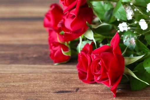 バラ 赤い花 薔薇 花 植物 花びら ばら 赤色 自然 赤 赤い薔薇 ローズ 花束 フラワー コピースペース クローズアップ プレゼント フラワーアレンジメント 美しい お花 きれい 綺麗 クリスマス バレンタイン ホワイトデー プロポーズ 贈り物 バレンタインデー ハート 愛 結婚 誕生日 告白 ギフト 幸せ 結婚式 記念日 ウェディング ブライダル