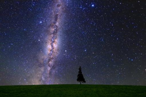 星降る草原の写真
