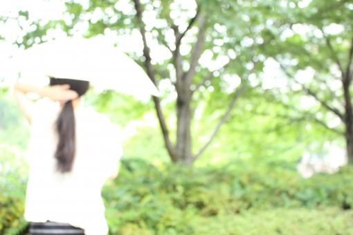 女性 後姿 髪 長髪 ロングヘア かみ 触る さわる 手 ぼかし ぼけ 風景 自然 植物 木 夏 日傘 傘 かさ ひがさ