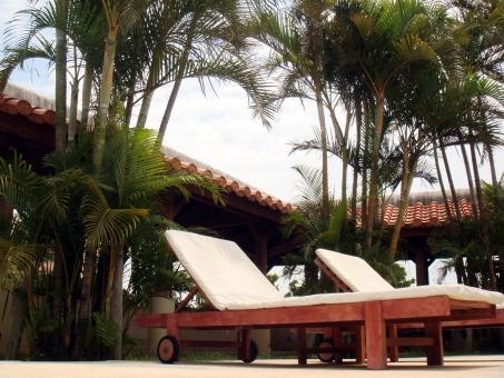 サマーベッド ヤシの木 椰子の木 リゾート 植物 プールサイド ホテル リフレッシュ 開放感 現実逃避 リラックス ゆったり くつろぐ 屋外 空 自然 風景 景色 旅行 夏 無人 のんびり 2つ