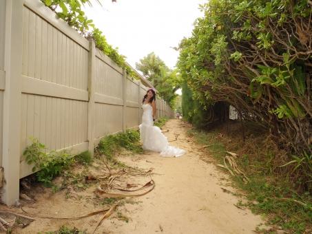 女性 花嫁 嫁 ワイフ ドレス ウェディング ウエディング 花 花冠 道 小道 植物 自然 ハワイ 結婚 bride ブライド ブライダル 旅行 解放