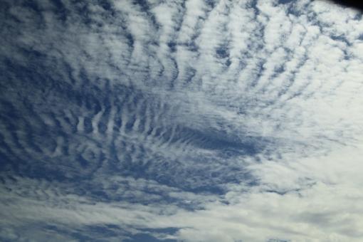 9月2日 東北道にて 残暑の候 うろこ雲 規則正しくつながる