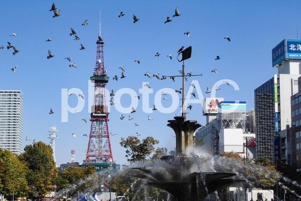 札幌大通り公園の写真