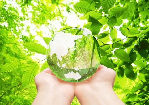 森林 地球儀 エコ イメージ エコイメージ 手 救う あたたかい 緑 葉っぱ 葉 木 樹木 森 林 透ける 透明感 クリーン クリーンエネルギー 地図 世界地図 日本地図 世界 日本 グローバル 自然 地球 植物 環境 ビジネス コピースペース 人物 明るい 背景 新緑 エコロジー アジア 緑色 エネルギー 自然エネルギー 日本列島 晴れ 清潔 省エネ 透明 エコロジーイメージ ナチュラル グリーン 夏 eco