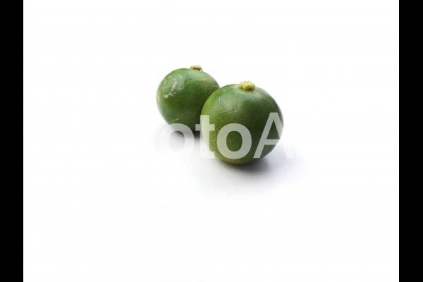 四季柑の写真