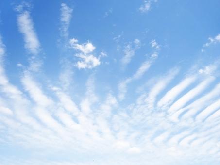 サラサラ さらさら 雲 波 青空 空 階段 骨 あばら 不思議 地震 肋骨 羽 天気 ウェザー 変化 宇宙 地球 環境 雨 曇り 前兆 不気味 綺麗 予報 珍しい 奇妙 大空 いっぱい 変わった 春 夏 秋 冬
