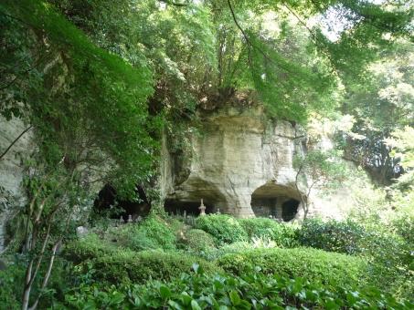 洞穴 岩 自然 緑 風景 鎌倉