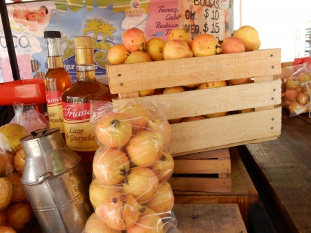 グアバ グァバ 黄色 オレンジ 赤 箱 木箱 フルーツ 果物 シロップ くだもの