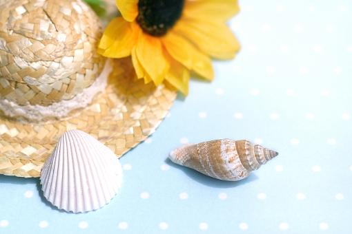 夏 季節 サマー summer 貝がら 麦わら帽子 向日葵 ひまわり バケーション 夏休み 海 海水浴 リゾート さわやか 爽やか 暑い 暑中見舞い