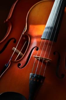 小物 楽器 弦楽器 バイオリン オーケストラ 木製 演奏 音楽 趣味 習い事 楽員 スメタナ パガニーニ カルメン 縦位置 コンサート 室内楽 プログラム 名曲