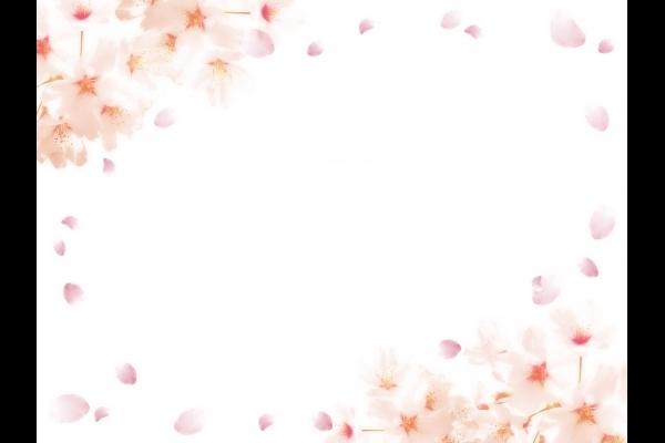 桜のフレームの写真