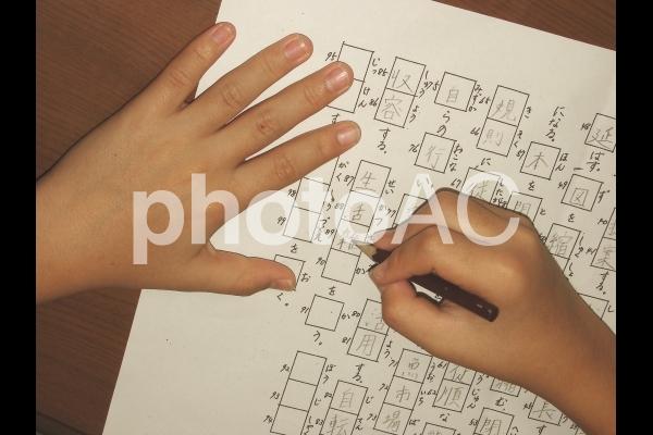 小学生 宿題の写真