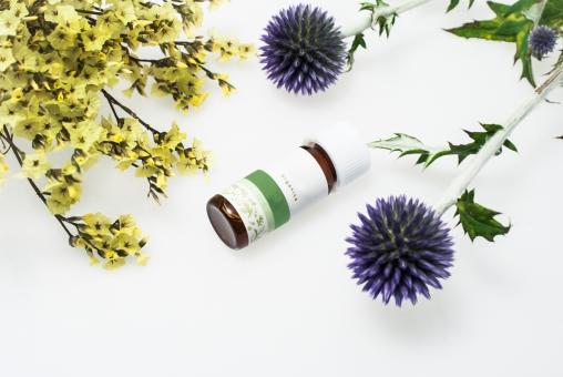 スキンケア オイル ボトル オーガニック アザミ 植物 スターチス 黄色 紫 美容 顔 体