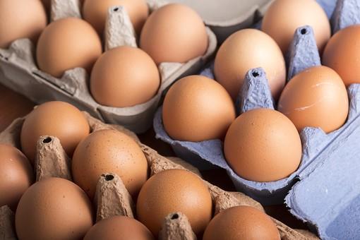 たまご 卵 玉子 タマゴ エッグ 楕円 卵色 ベージュ 料理 並べる 生き物 食べ物 食材 食料 置く 置いてある 物撮り 屋内 人物なし 横から視線 殻 斑点 18個 整然 複数 レシピ  容器 パック パック詰め 白とベージュ 対比 たくさん 紙パック