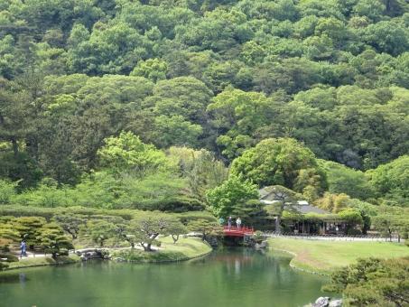 四国 香川 香川県 栗林公園 公園 日本庭園 高松 庭園 高松市 和 和風 日本 景色 自然 風景 庭 観光 観光地 名所 観光名所 緑 みどり グリーン マイナスイオン リラックス 林 森林 植物 湖 池 水 反射 鏡 水面 映る 木 橋 ブリッジ