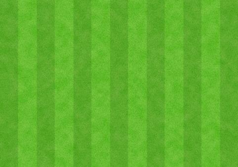 テクスチャ 背景素材 背景 バックグラウンド テクスチャー 芝生 サッカー 芝 グラウンド ピッチ スタジアム スポーツ 人工芝 フットボール 蹴球 地面 運動 体育 設備 環境 趣味 天然芝 しば グラス スタヂアム 競技場 運動場 校庭 バック 草 グランド 公園 庭園 緑 グリーン みどり