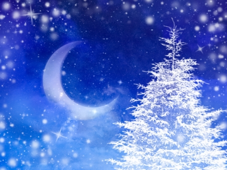 冬の夜空の写真