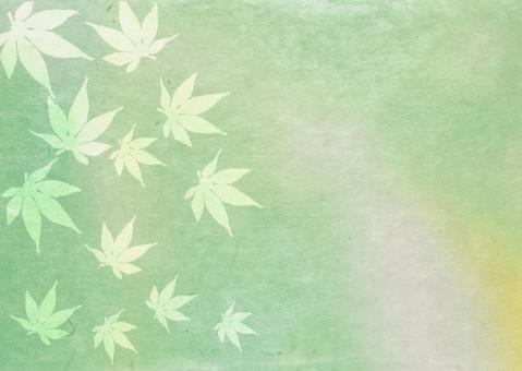 若草 グリーン ポストカード 新緑 和紙 広告 植物 和 初夏 和風 メッセージカード 夏 dm 舞う かえで 色紙 お祝い きれい 記念日 葉っぱ 葉 招待状 飾り 緑 壁紙 カエデ 装飾 涼しい 日本 メッセージ ギフトカード 枠 テクスチャ 背景 バックグラウンド 爽やか 模様