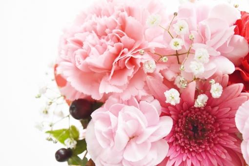 フラワーアレンジメント 花 はな フラワー カーネーション かすみ草 花束 花たば 母の日 誕生日 感謝 プレゼント ガーベラ ピンク ぴんく 赤 レッド 幸せ 幸運 ありがとう 背景 白 ホワイト 背景白 バックグラウンド 素材 イメージ 壁紙 テクスチャ 自然 植物 生け花 リース 明るい 贈る ギフト ブーケ 生花 お祝い メッセージカード メッセージ クリスマス 恒例行事 行事 バレンタイン 贈り物 お返し 結婚 結婚式 ウエディング 春 はる 5月 12月 6月 2月 可愛い かわいい 優しい 愛しい 美しい 接写 アップ