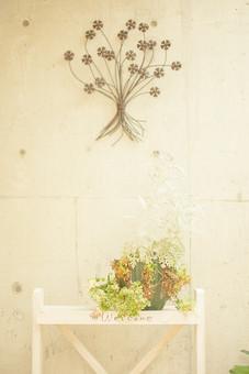 自然 植物 葉 葉っぱ 緑 茶色 観葉植物 成長 育つ 伸びる アレンジメント ディスプレイ 置物 植木鉢 プランター 飾り 棚 建物 建築 建築物 壁 コンクリート 模様 アート 室内 屋内 景観