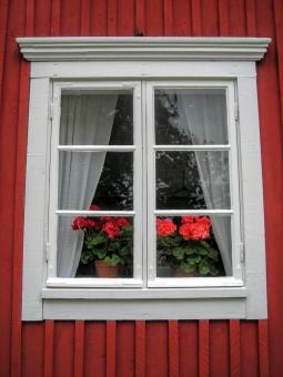 北欧 スウェーデン 窓辺 窓 窓枠 赤い家 赤い塗料 白い窓枠 花 ペラゴニア 赤 植物 カーテン 住宅 建物