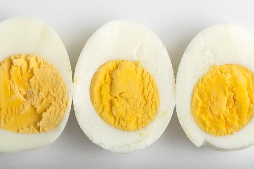 たまご 卵 玉子 タマゴ エッグ 卵色 料理 食べ物 食材 食料 物撮り 屋内 人物なし 上から視線 レシピ 鶏 にわとり ニワトリ ボイル ゆで卵 半分 半割り 黄身 白身 白バック 床 白 黄 3切れ 完熟 並べる 整然