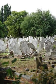 England United Kingdom UK London 倫敦 英国 異国 イギリス ロンドン 世界都市 海外 外国 植物 樹木 木々 緑 茂る 生い茂る 墓地 墓 お墓 ゾンビ 怖い 悲しい 哀愁 石造り 石  cemetery お化け 風景 景色