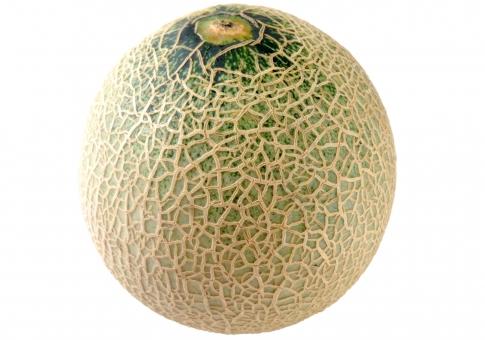 食べ物 野菜 果実 青果 メロン 切り抜き 一年生草本植物 背景透過