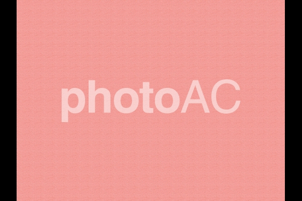 帆布_ピンクの写真