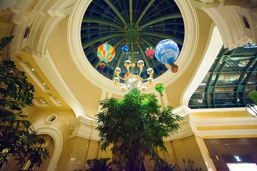 建築 建築物 建物 施設 天井 ドーム 円形 ガラス 窓 気球 吊るす オブジェ 飾り ディスプレイ 木 樹木 葉 葉っぱ 緑 植物 自然 電気 電灯 ローアングル カラフル 室内 屋内 無人 アメリカ 外国 景観