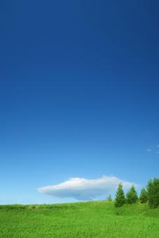草原と青空と雲-縦長構図の写真