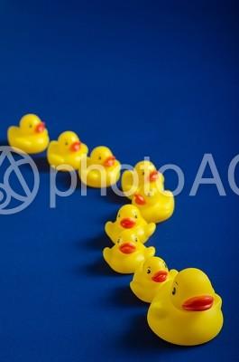 整列するアヒルのおもちゃ9の写真
