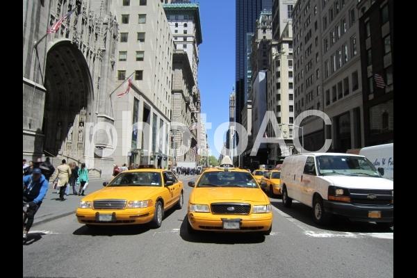 ニューヨーク31の写真