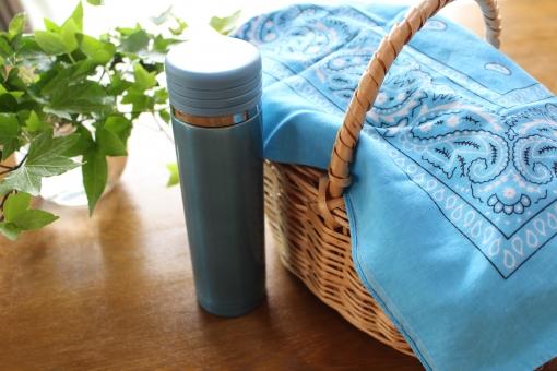 ピクニック お弁当 水筒 昼ごはん お茶 カゴ ランチ 穏やか 緑 自然 明るい 眩しい 日差し お出かけ お休み 休日 植物 アイビー 庭 木 風 春 初夏 夏 バンダナ 青 水色 葉