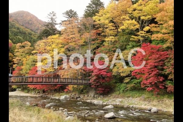 紅葉20 塩原渓谷の写真