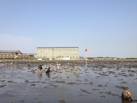 潮干狩り 木更津の写真