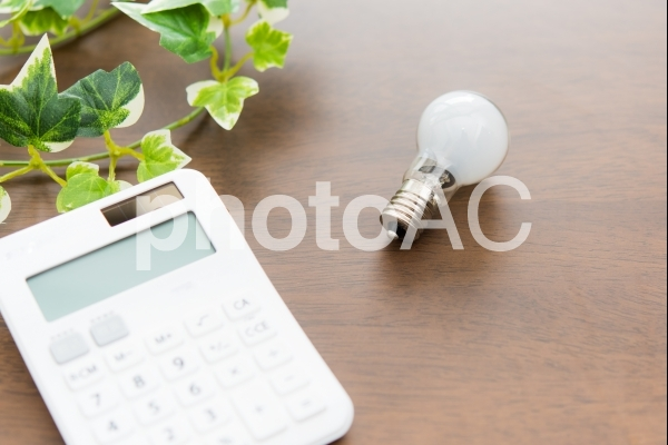 電球と計算機の写真