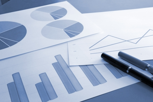ビジネス 資料 書類 データ 統計 集計 分析 業績 売上 推移 比率 分布 割合 市場 シェア 利益 経常利益 変化 変動 プレゼン 提案 営業 見積もり 予測 見積り 検討 方針 目標 効果 課題