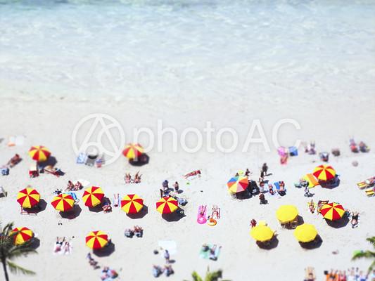 砂浜に沢山のビーチパラソルが立っている風景の写真