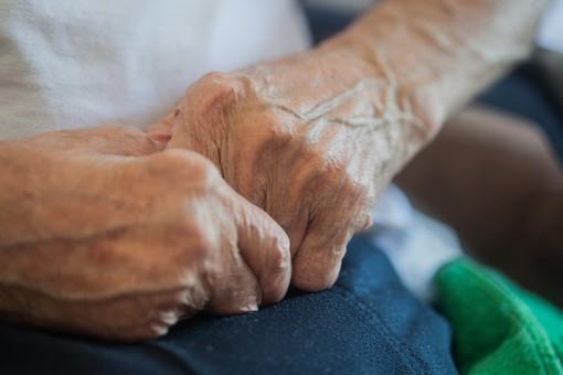 人物 老人 お年寄り 高齢者 シルバー   年老いた手 ハンドパーツ 手 指 ハンド   パーツ 手の表情 年老いた手 皺 しわ   シワ クローズアップ 男性 おじいちゃん おじいさん 両手 握る 握りしめる 手を組む 座る 手元 手先 指先