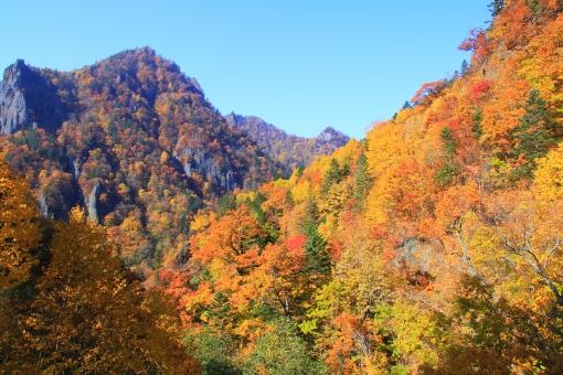 豊平峡 紅葉 秋 見ごろ きれい 綺麗 うっとり 息をのむ 青空 美しい 秋晴れ 秋 山奥 美しい 札幌 北海道 谷 渓谷 峡谷 崖 断崖絶壁 岩肌 ごつごつ