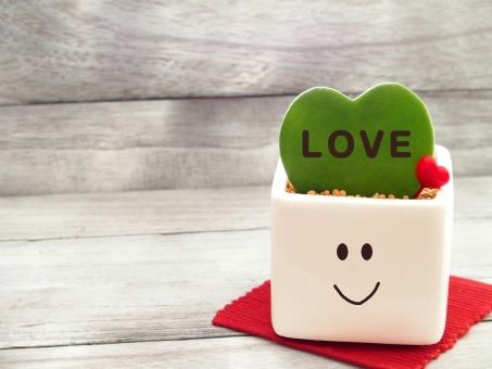ハート ハート型 サボテン 顔 LOVE 愛情 バレンタイン 木目 観葉植物 白い容器 陶器 四角い 雑貨 2月 ラブ 幸せ 多肉植物 鉢