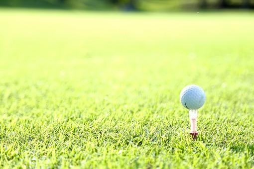 スポーツ レジャー 運動 屋外 外  野外 休日 趣味 ゴルフ ゴルフ場  ゴルフコース ゴルフボール ボール 球 球技  ティー ティーショット 芝生 緑 グリーン  地面 アップ 第一打 接待 ローアングル  ボケ