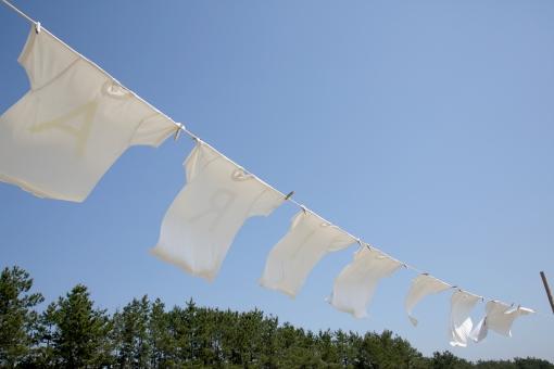 シャツ tシャツ 白 白シャツ 下着 干す 乾かす 乾燥 空 青空 晴れ 青 洗濯 洗濯物 衣類 服 半袖 半そで ティーシャツ 屋外 無人 青色 快晴 洗濯バサミ 洗濯ばさみ 洗濯挟み ランドリー ピンチ クリップ 家事 生活 物干し 吊る 吊るす 白色 吊す 風 風景 天気 ロープ 人物なし 日本
