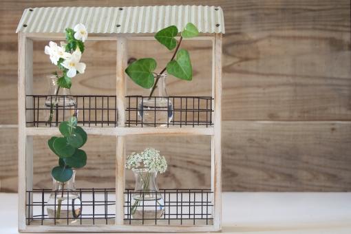 観葉植物 花 アイビー ユーカリ バコパ センキュウ 白 グリーン 緑 ハウス ナチュラル 花びん 4 ガラス 花瓶 部屋 ルーム シェア 共同