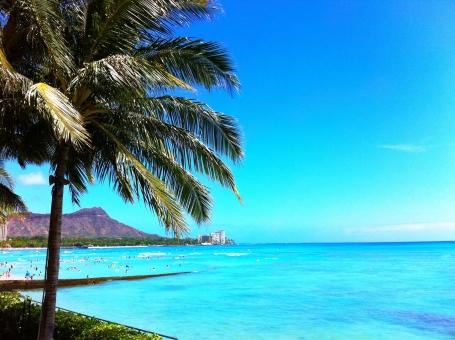 ハワイ⑤の写真