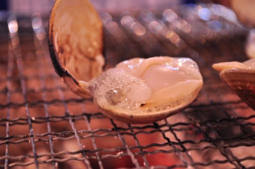 焼き蛤 焼きはまぐり 貝 炭火 食事 炭火焼き 炭火焼 夏 bbq 食べ物